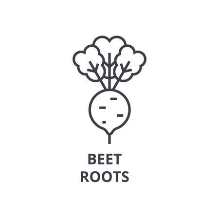 Beet, roots line icon, outline sign, linear symbol, flat vector illustration.