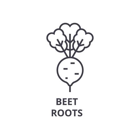 Betterave, icône de ligne de racines, signe de contour, symbole linéaire, illustration vectorielle plane. Vecteurs