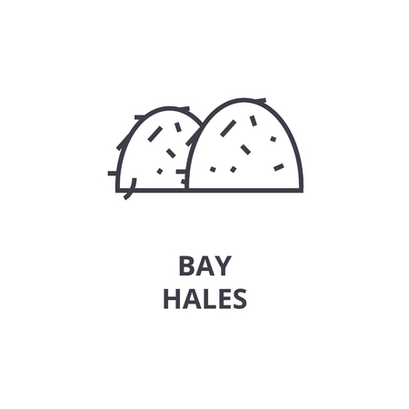 Bay hales line icon, outline sign, linear symbol, flat vector illustration.