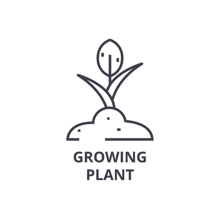 Growing plant line icon, outline sign, linear symbol, flat vector illustration. Stock Vector - 91056863