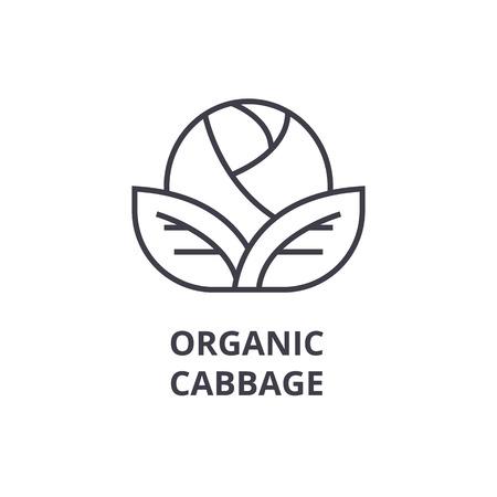 organic cabbage line icon, outline sign, linear symbol, flat vector illustration Illustration