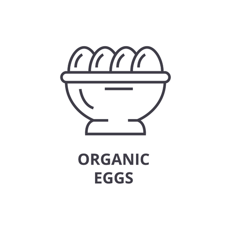 Organic eggs line icon illustration.
