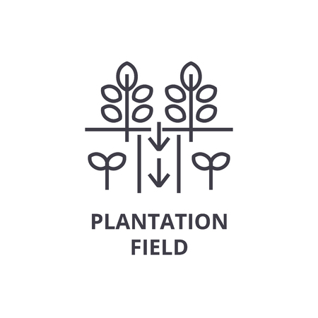 Plantation field line icon, outline sign, linear symbol, flat vector illustration.