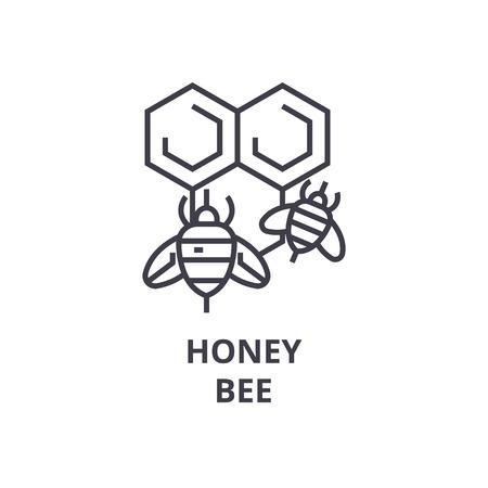 Honeybee line icon illustration.
