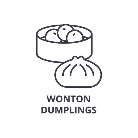 wonton, dumplings line icon, outline sign, linear symbol, flat vector illustration Banco de Imagens - 91076950