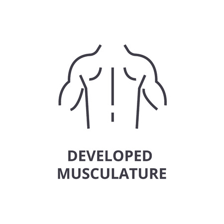 Developed musculature thin line icon, sign, symbol, illustration, linear concept vector.