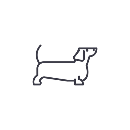 dachshund vector line icon, sign, illustration on white background, editable strokes