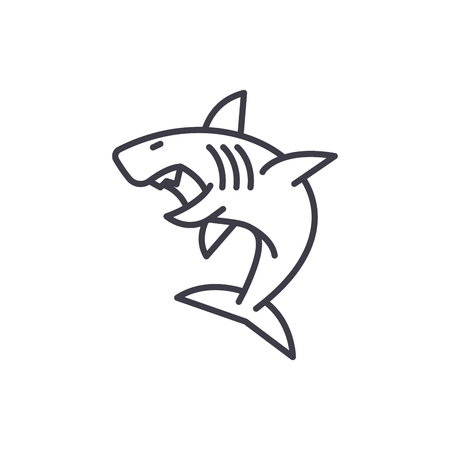 great white shark vector line icon, sign, illustration on white background, editable strokes