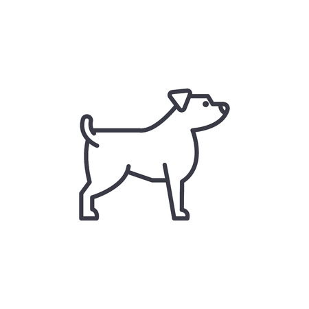 jack russell terrier vector line icon, sign, illustration on white background, editable strokes