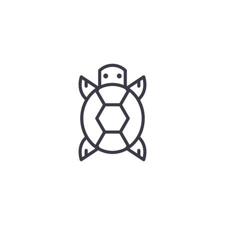 turtle front view vector line icon, sign, illustration on white background, editable strokes