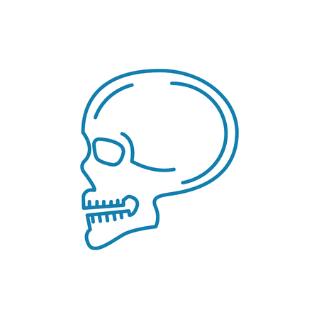 Scanning of the skull line icon, vector illustration. Scanning of the skull linear concept sign.