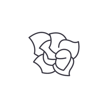 Gardenia line icon, vector illustration. Gardenia flat concept sign. Illustration