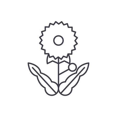 Dandelion line icon, vector illustration. Dandelion flat concept sign.