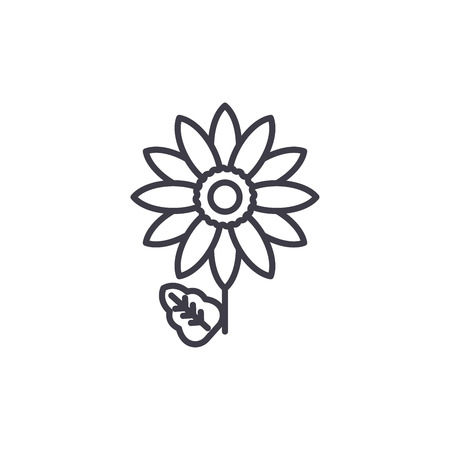 Gerbera line icon, vector illustration. Gerbera flat concept sign.