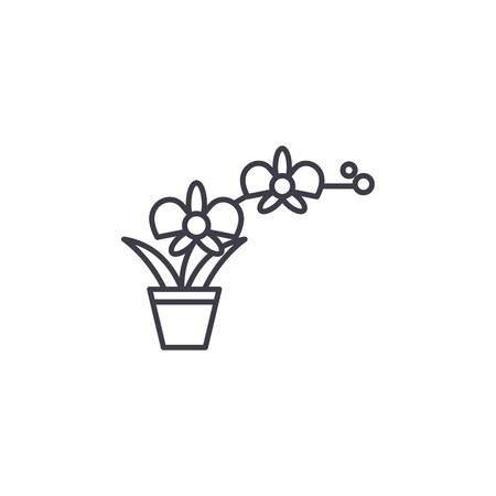 Orchid pot line icon, vector illustration. Orchid pot flat concept sign.