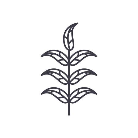 Pecan leaf line icon, vector illustration. Pecan leaf flat concept sign.