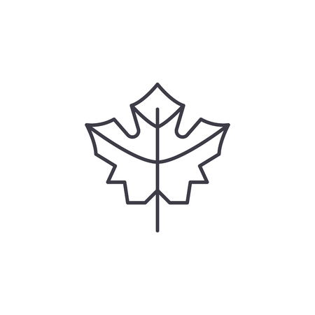 Maple leaf line icon, vector illustration. Maple leaf flat concept sign.