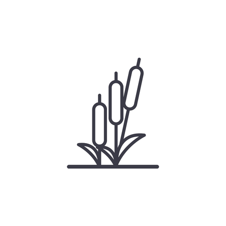 Reed line icon, vector illustration. Reed flat concept sign.