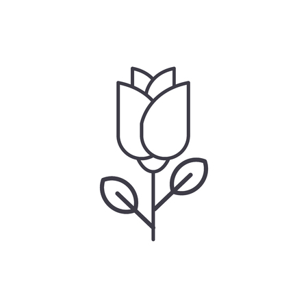 One rose line icon, vector illustration. One rose flat concept sign. Illustration