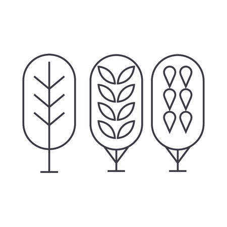 Birch tree thin line icon, vector illustration. Birch tree linear concept sign.