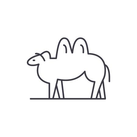 Camel line icon concept. Camel vector linear illustration, sign, symbol Illustration