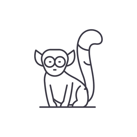 Lemur line icon concept. Lemur vector linear illustration, sign, symbol Stok Fotoğraf - 127493860