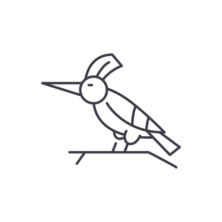 Woodpecker line icon concept. Woodpecker vector linear illustration, sign, symbol