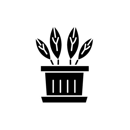 Indoor plant black icon, concept vector sign on isolated background. Indoor plant illustration, symbol Illustration