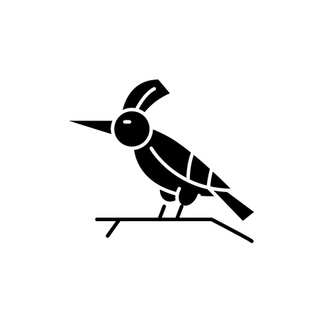 Woodpecker black icon, concept vector sign on isolated background. Woodpecker illustration, symbol