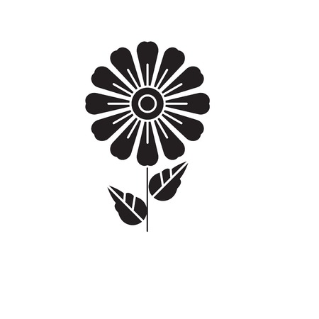 Daisy black vector concept icon. Daisy flat illustration, sign, symbol