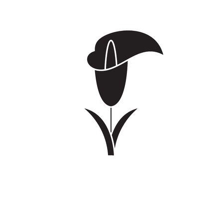 Calla lily black vector concept icon. Calla lily flat illustration, sign, symbol Фото со стока - 126906039
