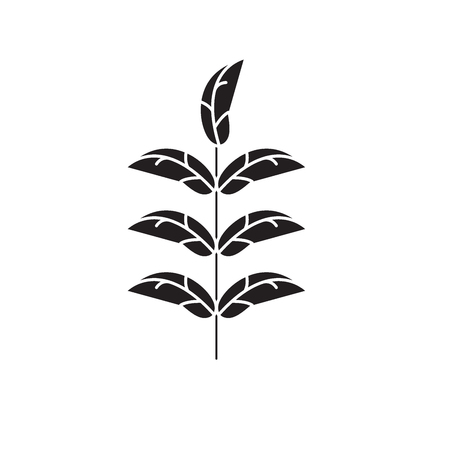 Pecan leaf black vector concept icon. Pecan leaf flat illustration, sign, symbol
