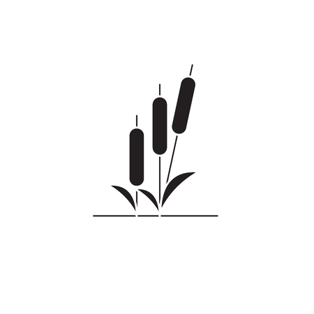 Reed black vector concept icon. Reed flat illustration, sign, symbol