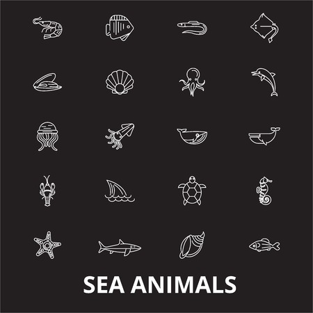 Sea animals editable line icons vector set on black background. Sea animals white outline illustrations, signs,symbols