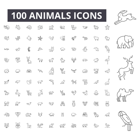 Animals editable line icons, 100 vector set on white background. Animals black outline illustrations, signs, symbols