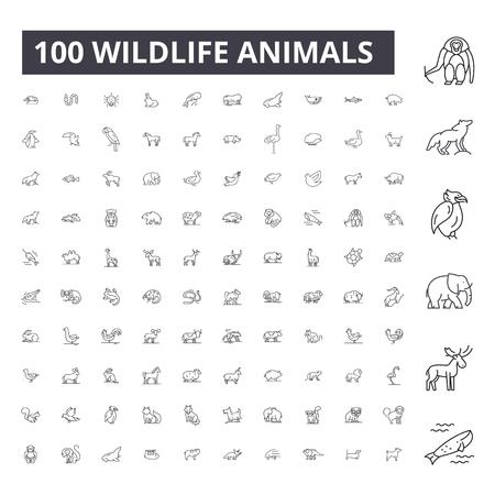 Iconos de líneas editables de animales de vida silvestre, conjunto de vectores 100 sobre fondo blanco. Animales silvestres contorno negro ilustraciones, signos, símbolos