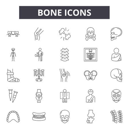 Bone line icons for web and mobile. Editable stroke signs. Bone  outline concept illustrations