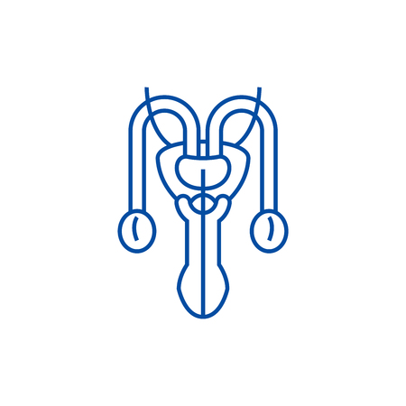 Male sexual organs line concept icon. Male sexual organs flat  vector website sign, outline symbol, illustration.