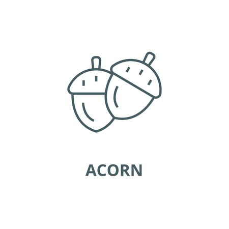 Acorn line icon, vector. Acorn outline sign, concept symbol, illustration