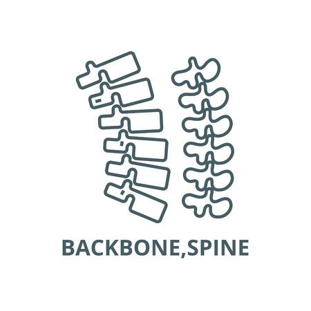 Backbone,spine line icon, vector. Backbone,spine outline sign, concept symbol, illustration 向量圖像