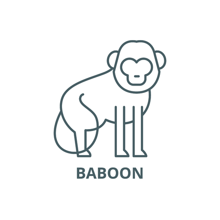 Baboon line icon, vector. Baboon outline sign, concept symbol, illustration