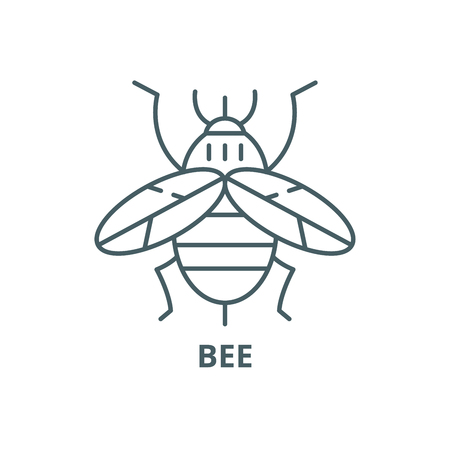 Bee line icon, vector. Bee outline sign, concept symbol, illustration 일러스트