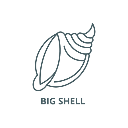 Big shell  line icon, vector. Big shell  outline sign, concept symbol, illustration