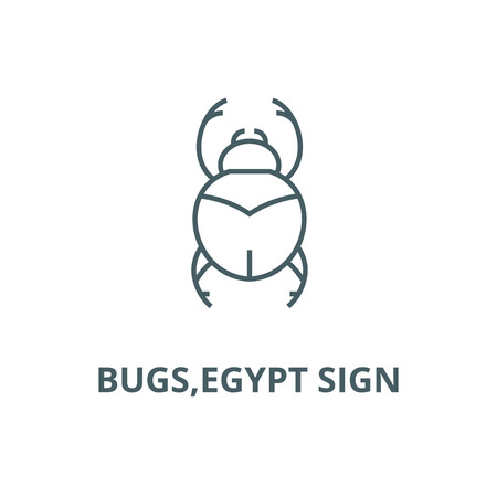 Bugs,egypt sign line icon, vector. Bugs,egypt sign outline sign, concept symbol, illustration