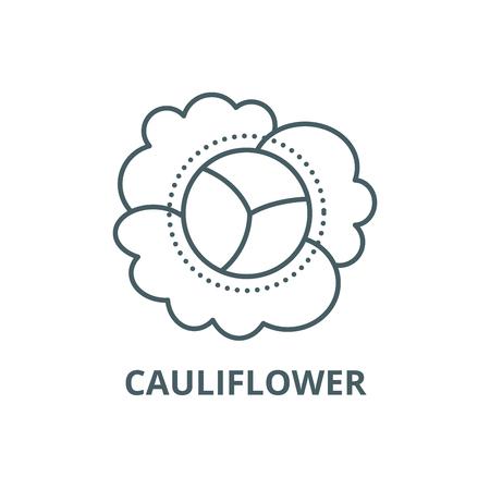 Cauliflower line icon, vector. Cauliflower outline sign, concept symbol, illustration Banco de Imagens - 120732579