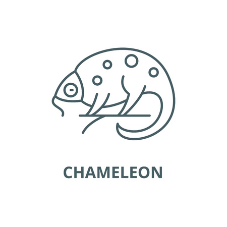 Chameleon line icon, vector. Chameleon outline sign, concept symbol, illustration