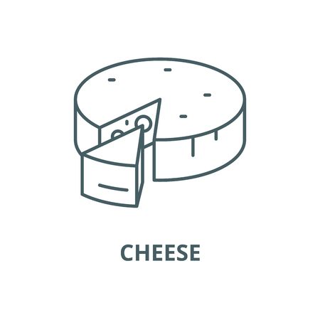 Cheese line icon, vector. Cheese outline sign, concept symbol, illustration