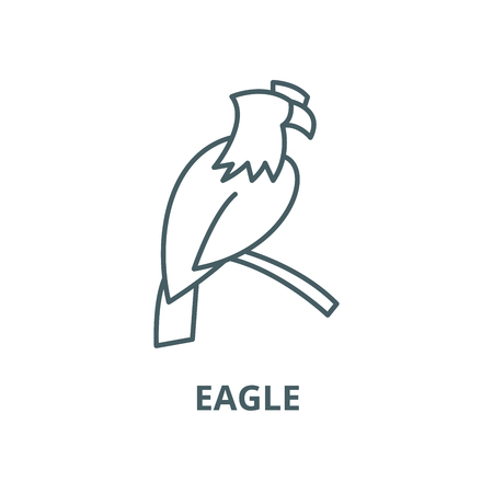 Eagle line icon, vector. Eagle outline sign, concept symbol, illustration