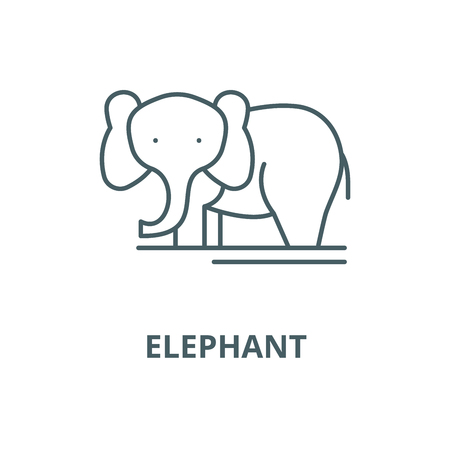 Elephant line icon, vector. Elephant outline sign, concept symbol, illustration