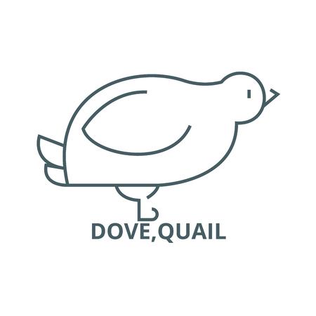 Dove,quail line icon, vector. Dove,quail outline sign, concept symbol, illustration